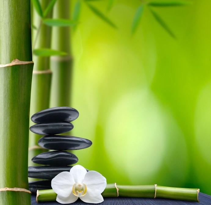 колготки из бамбука отзывы